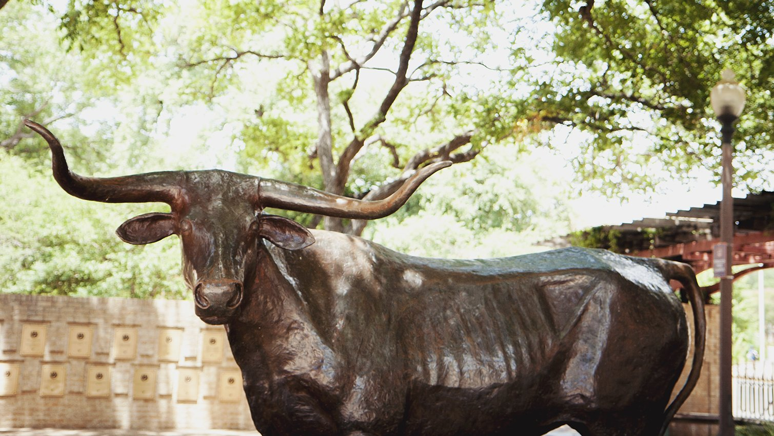 Bevo Sculpture